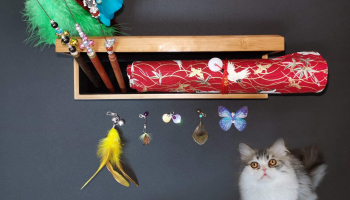 11PCS Exquisite Handmade Cat Feather Toy Set