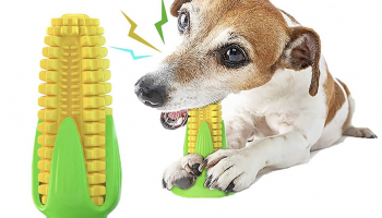 PET TOY TOOTHBRUSH