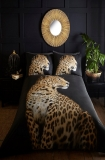 Duvet cover and two pillow cases. King size