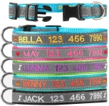 Graceful life Personalized ID Collar for Big Large Small Dogs