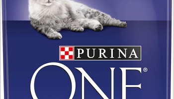 Best Price Purina ONE Adult Dry Cat Food 3kg Pack of 4